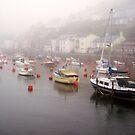 Cornish Mist by trish725