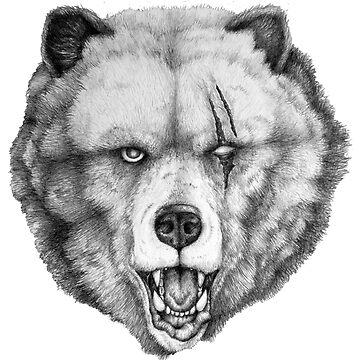 The Bear by E-McAleavey