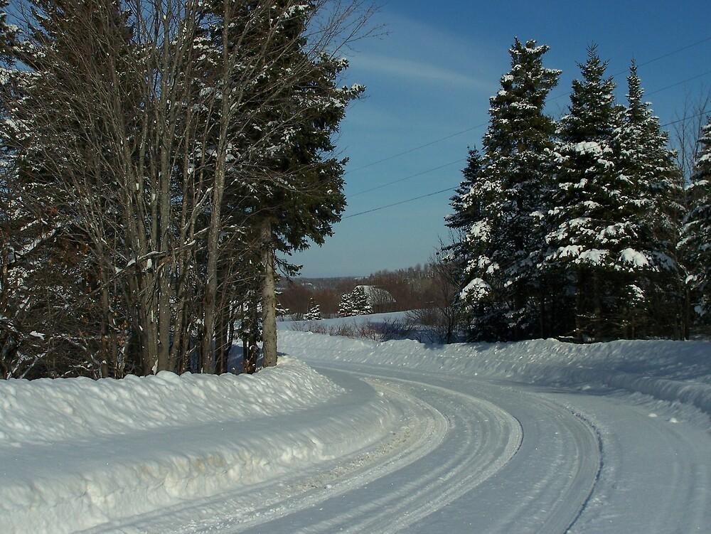 Snow Country by Gene Cyr