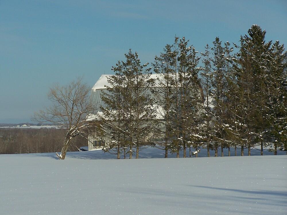 Winter Barn by Gene Cyr