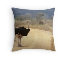 Slow down! This is a pedestrian crossing... Throw Pillow
