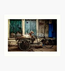 Goat on Wheels Art Print