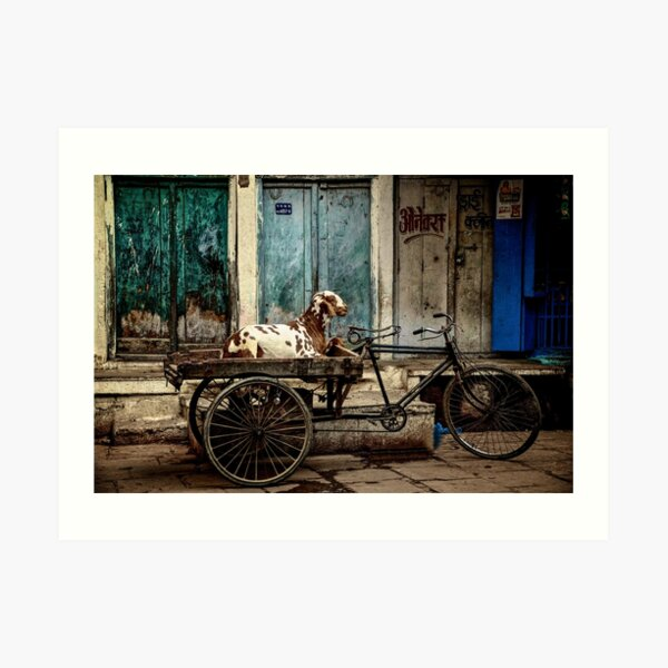 Goat on Wheels Art Print