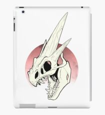 Pokemon - Mega Charizard Y Skull iPad Case/Skin