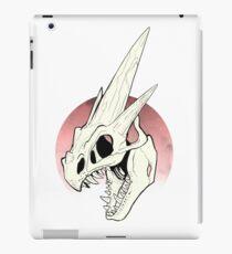 Pokemon - Mega Charizard Y Skull iPad Case/Skin