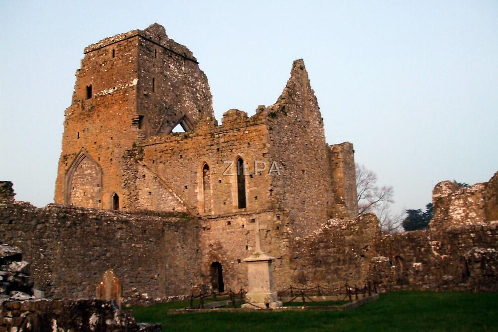 ATHASSEL ABBEY GOLDEN CASHEL CO. TIPPERARY by ZILPA