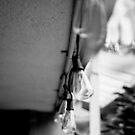BW - Lightbulb by Jake Kauffman