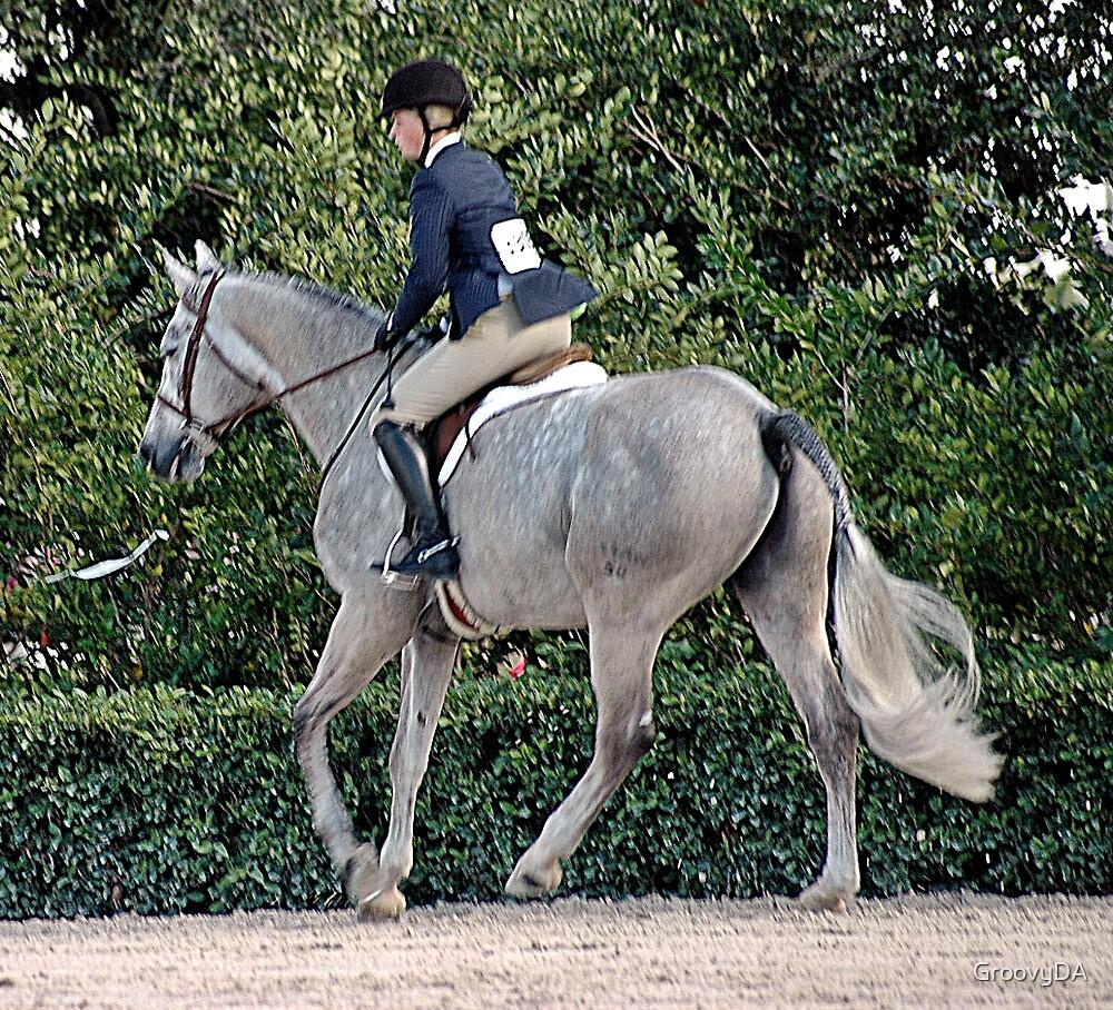 Dapple Horse by GroovyDA