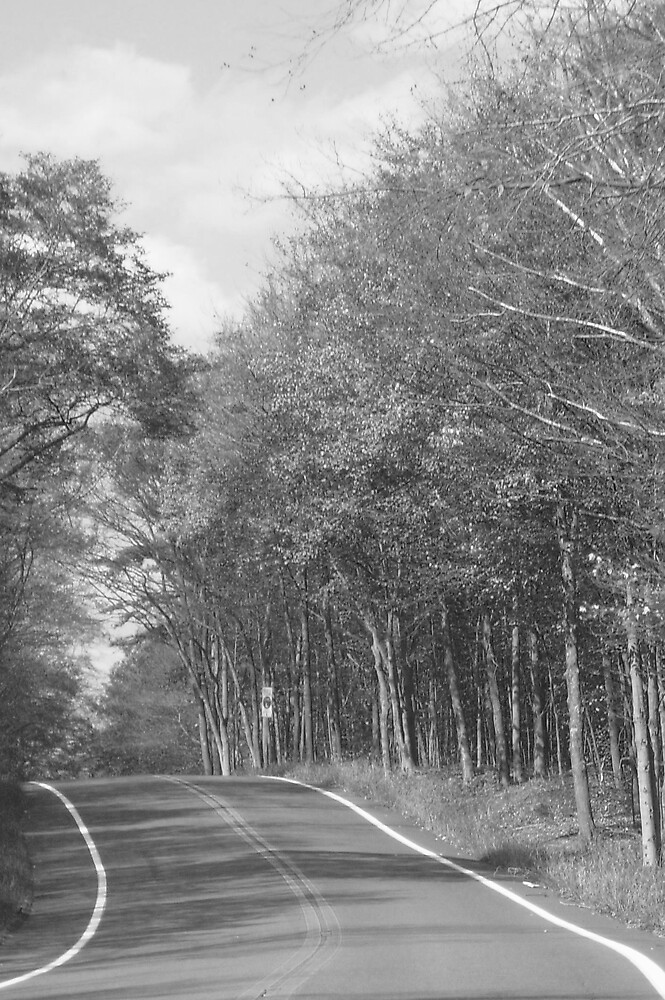 sunday drive by jonis57