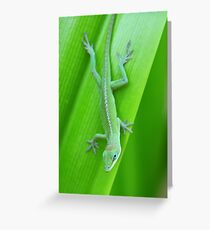 Green Anole on a Leaf Vertical Greeting Card