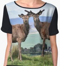 Red Deer in the Peak District Women's Chiffon Top