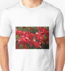 Red Bougainvillae 1 T-Shirt