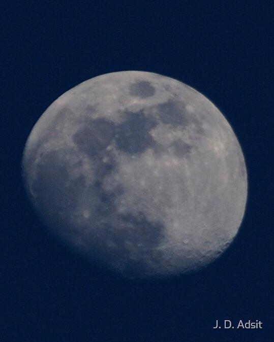 Blue Moon Rising by J. D. Adsit