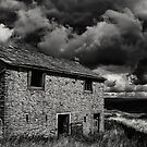 Brooding Sky by Lee  Gill