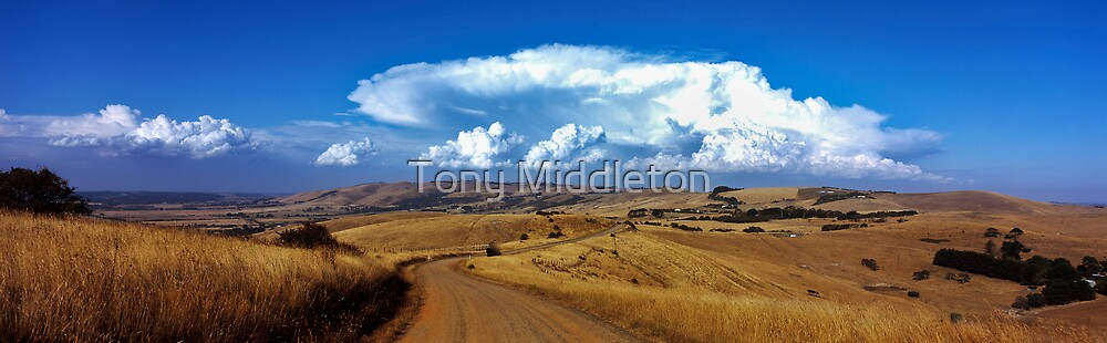 a dry summer... by Tony Middleton