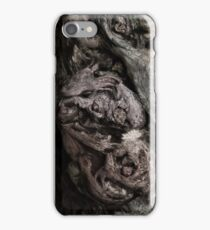 Lair iPhone Case/Skin