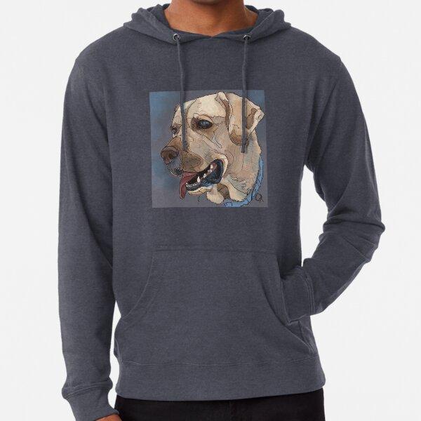 Evolution Dog Walker Sweat à capuche Hoody Chiots Pull Haut drôle cadeau d/'anniversaire
