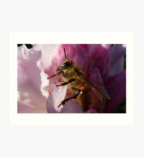 Simply Bee! - NZ - Southland Art Print
