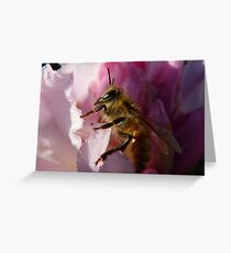 Simply Bee! - NZ - Southland Greeting Card