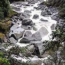 Haast River by Duncan Drummond