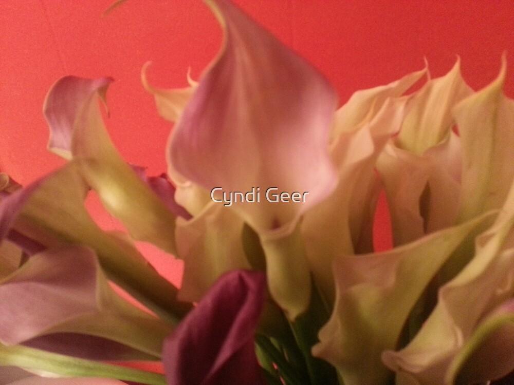 lilies by Cyndi Geer