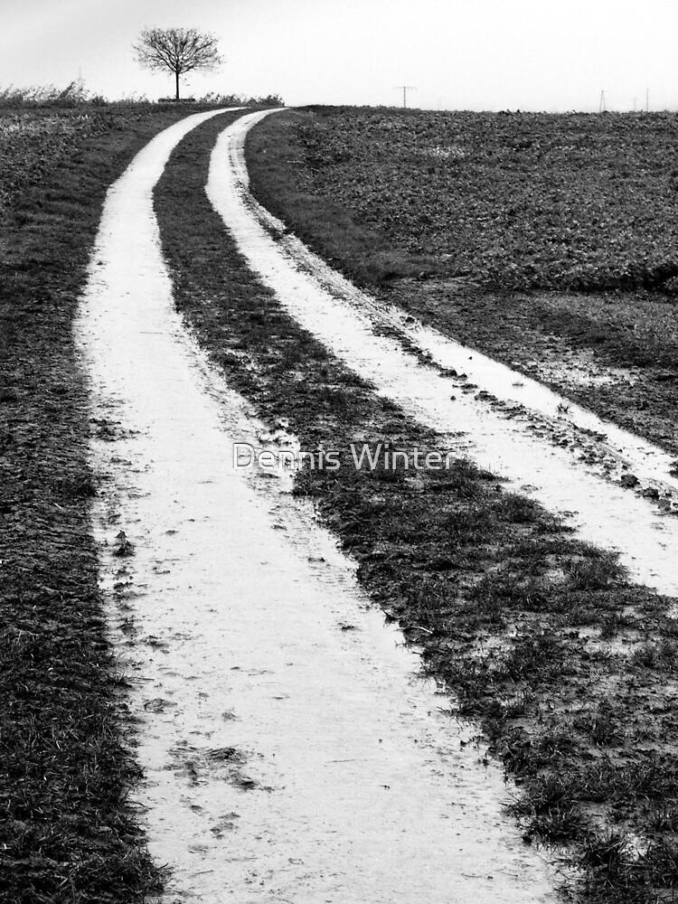 Track by Dennis Winter