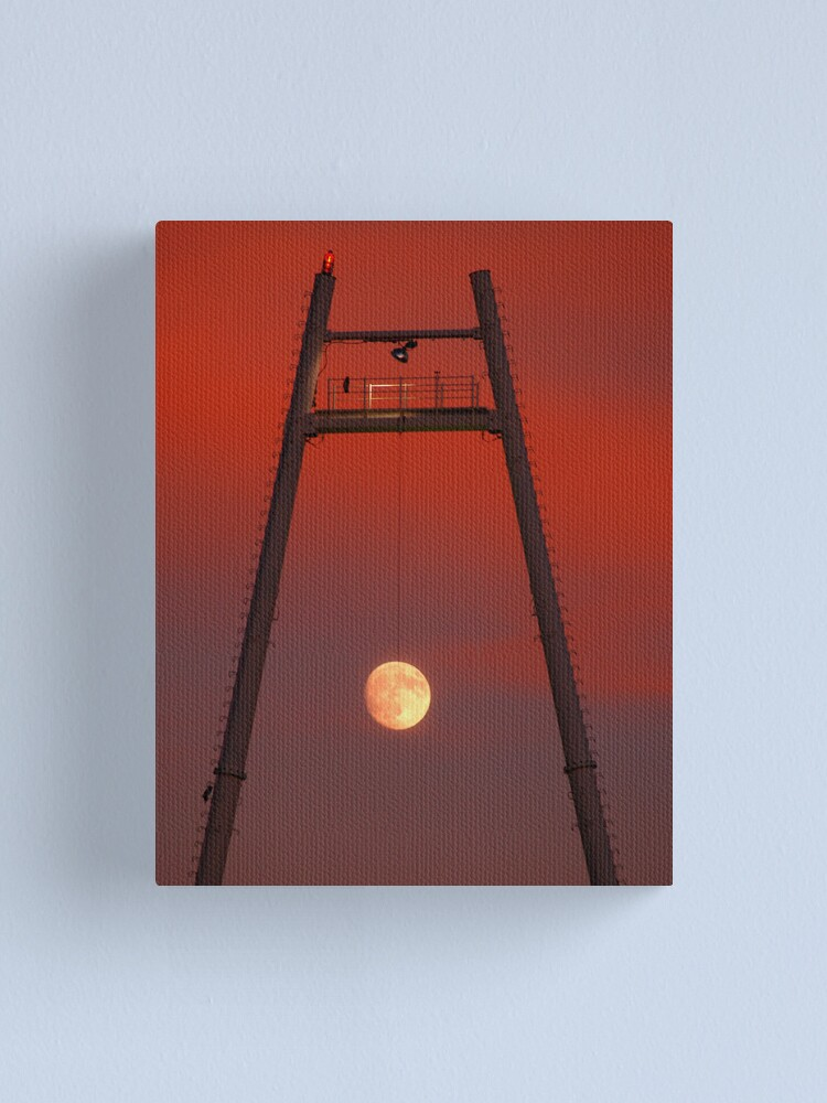 Alternate view of Moonswing Canvas Print