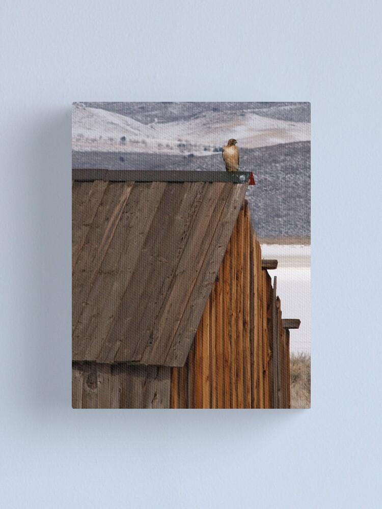 Alternate view of Rooftop Raptor Canvas Print