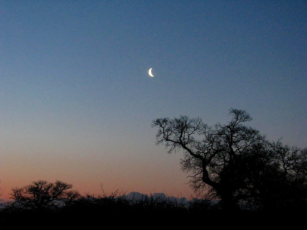 Pre-dawn by JUDI2008