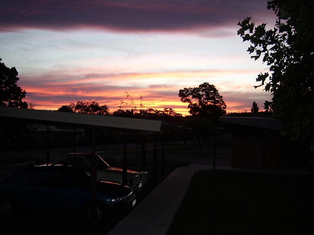 summer sunset by bessie420