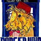Danger Who, the Eleventh Guinea Pig Doctor by Rachel Smith