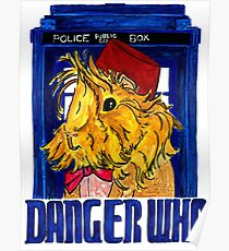 Danger Who, the Eleventh Guinea Pig Doctor Poster