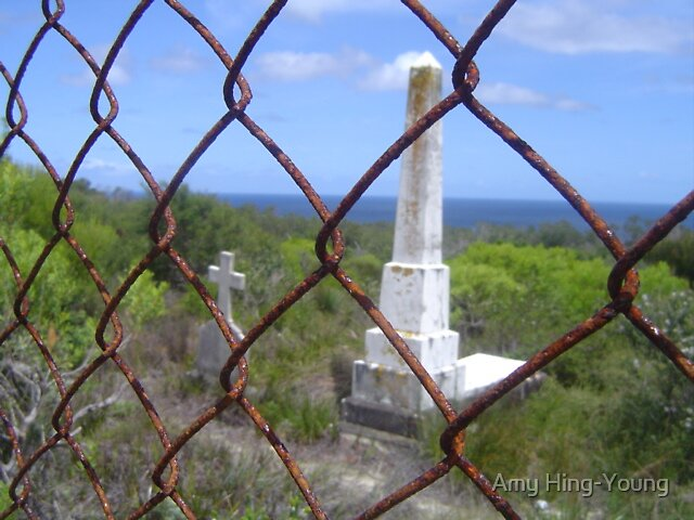 Graves at North Head by Amy Hing-Young