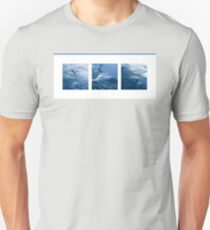 three perturbations and echoes  - photography Unisex T-Shirt
