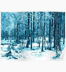 Is winter coming already? Frosty blue enchanted forest Poster