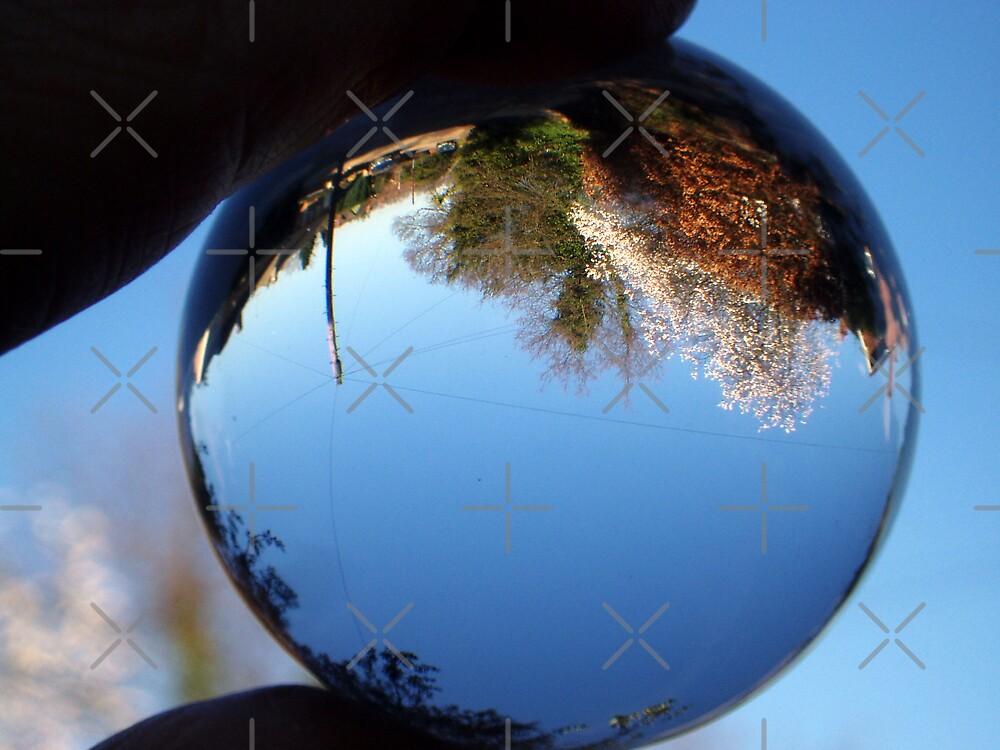 Snow Globe World? by Paul Revans