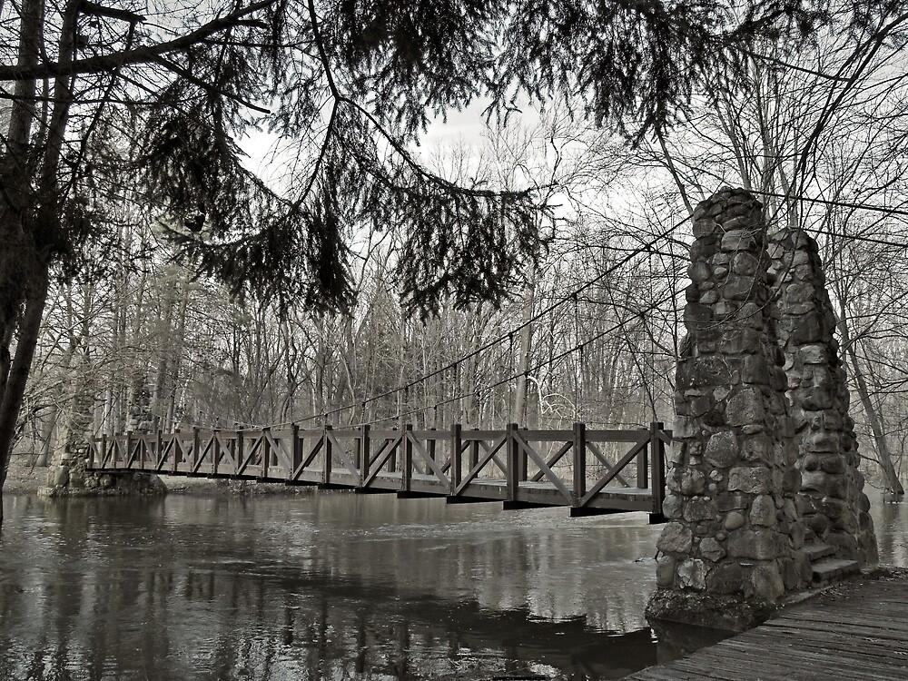 Across The Bridge by Terry Doyle