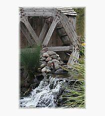 Black Swan & Wheel Photographic Print