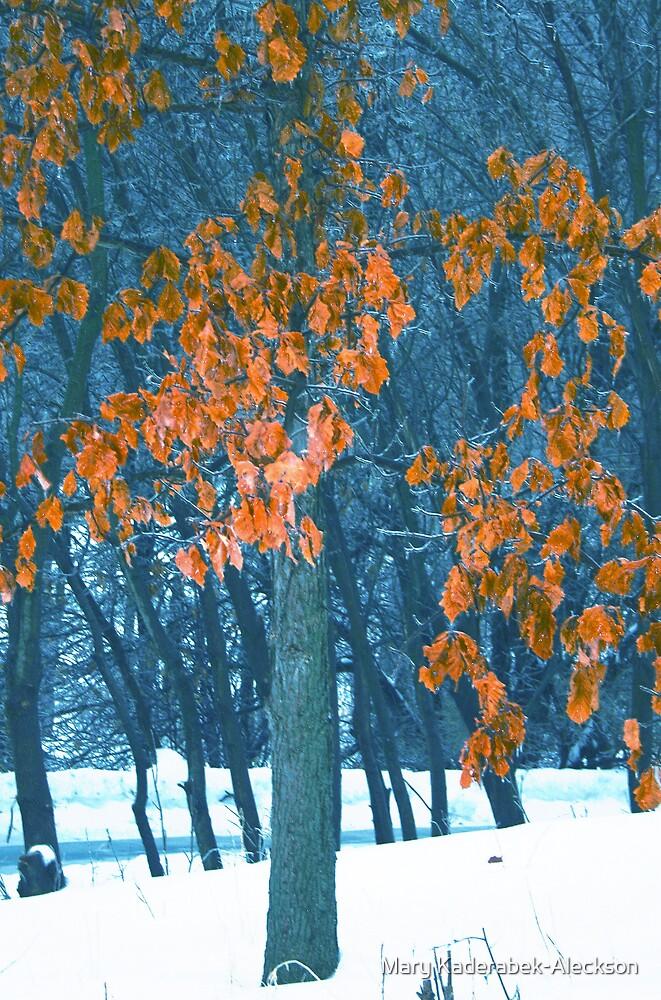 Orange Tree by Mary Kaderabek-Aleckson