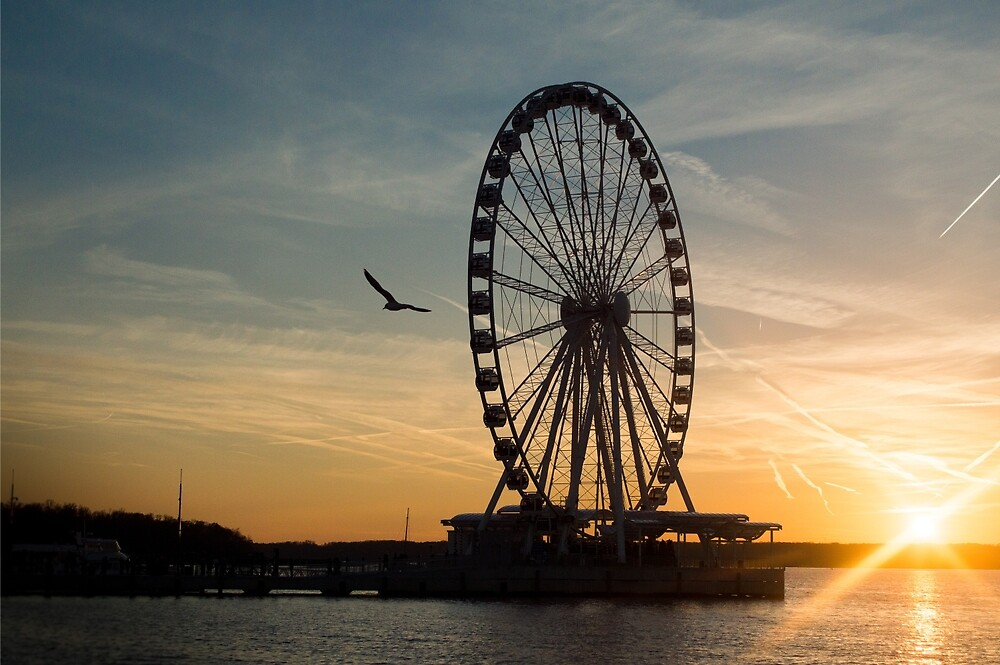 The Wheel by Jay-J