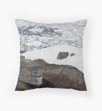 Middle Cove: Iceberg Season. Throw Pillow