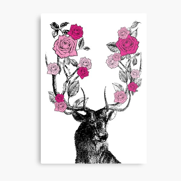 The Stag and Roses | Deer and Roses | Stag and Flowers | Deer and Flowers | Vintage Stag | Antlers | Woodland | Highland | Pink |  Metal Print