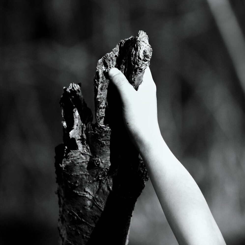 Reach by Viviane Cathmoir