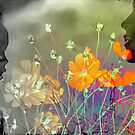 The colours of Love - Mother and child by Vasile Stan