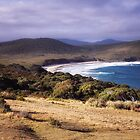 Cloudy Bay by Karine Radcliffe