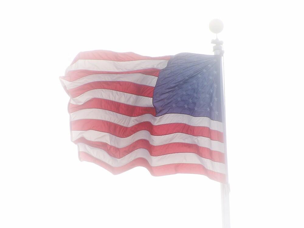 american flag aglow #2 by Dawna Morton