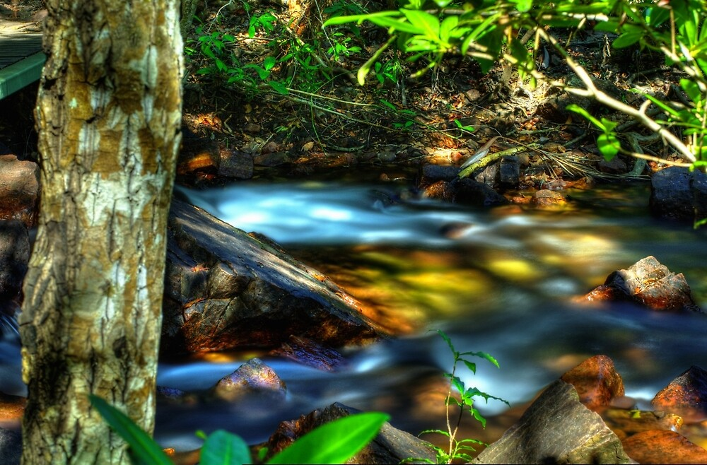 Florence Falls River - Litchfield National Park by David Blackwell