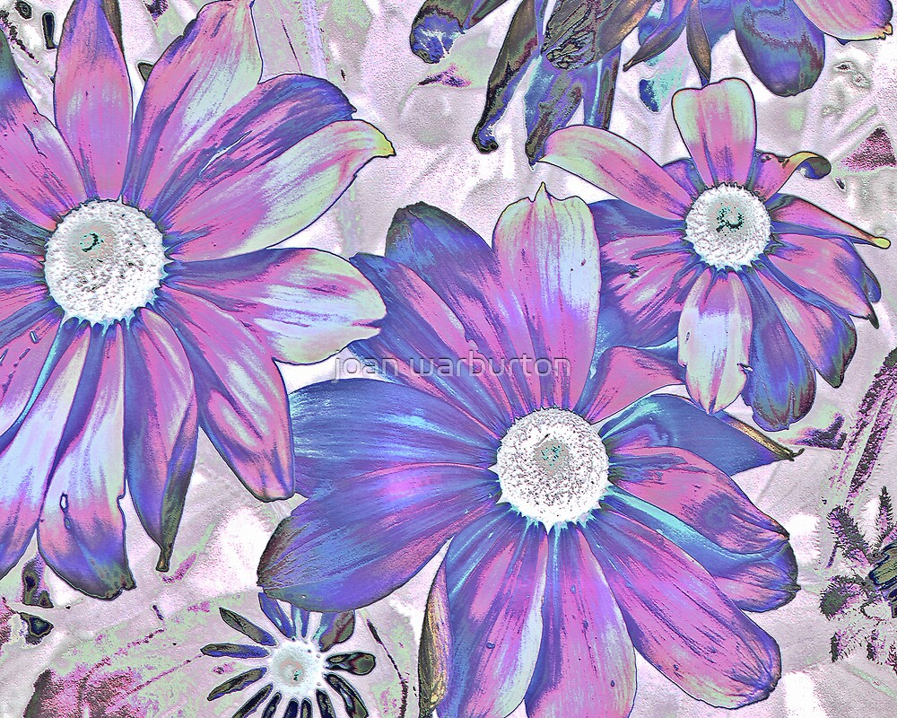 Daisy Mae by joan warburton