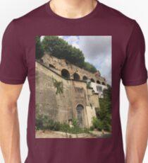 Aqueduct T-Shirt