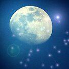 STAR LIGHT STAR BRIGHT by conilouz